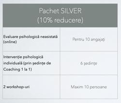 Program-Business-Silver