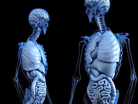 Manifestarea afecțiunilor gastro-intestinale în funcție de percepția pacienților