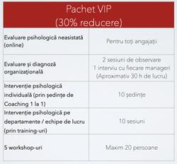 Program-Business-VIP