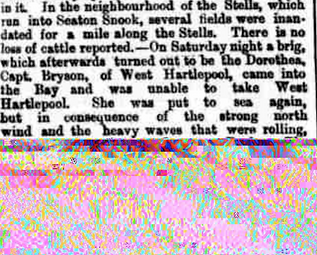 Partial article on the wreck of the Dorothea, 1868