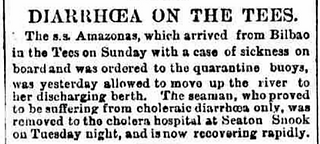 Cropped newspaper report confirming the taking-over of houses in Seaton Snook to provide room for a cholera hospital