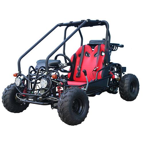 Tao Motor GK110 Go Kart  $1299.00