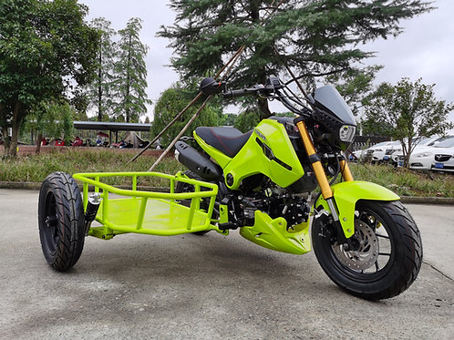 Icebear 125cc Fuerza with side car, $1800 shipped to you door.