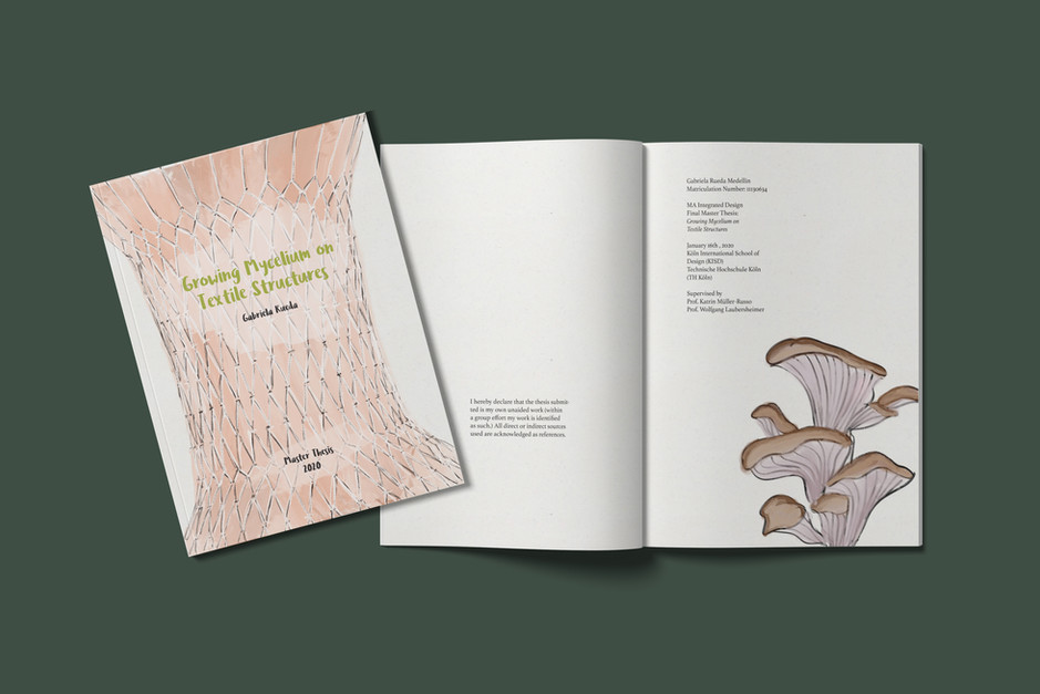 Master Thesis Booklet