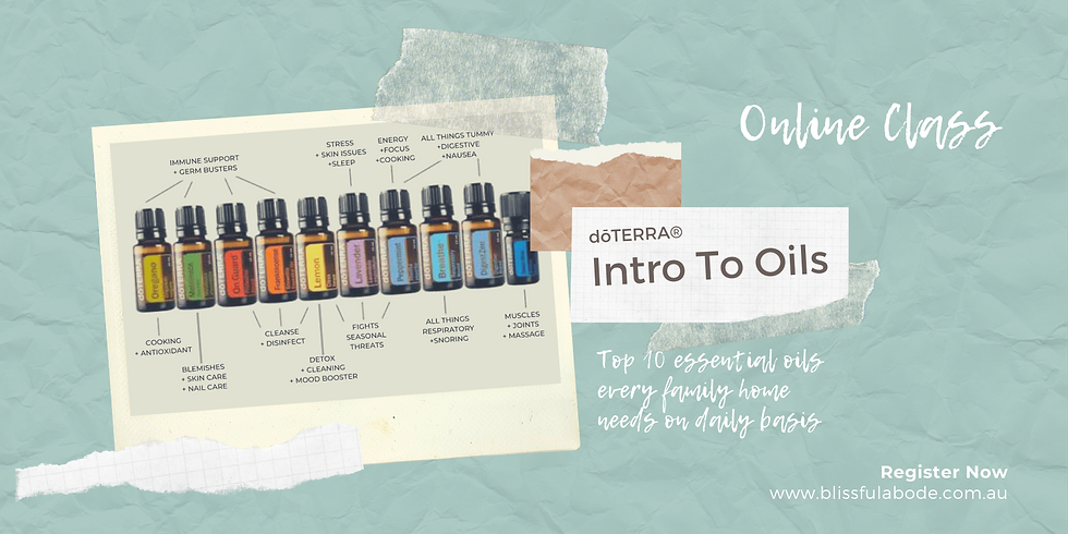 Intro to Oils | Online Class