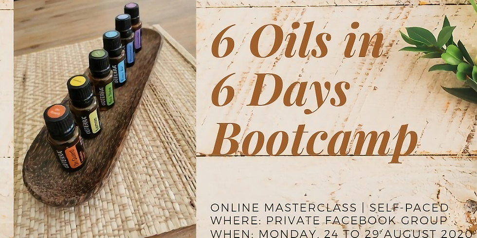 Essential Oils Bootcamp