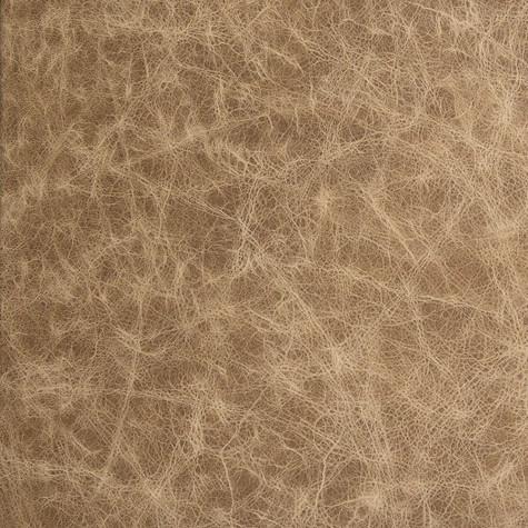 Terra - Leather -Album