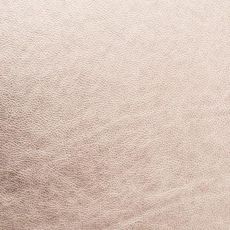 Champagne - Leather - Album