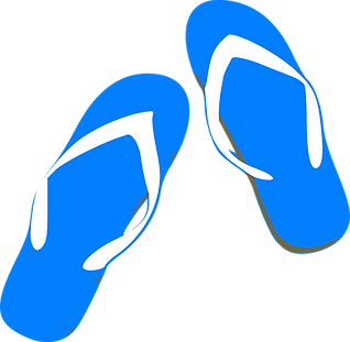 thongs-305284_1280.png