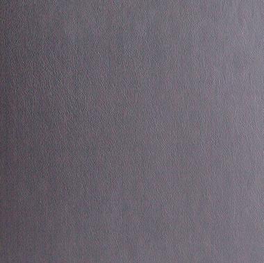 Iron - Leather - Album