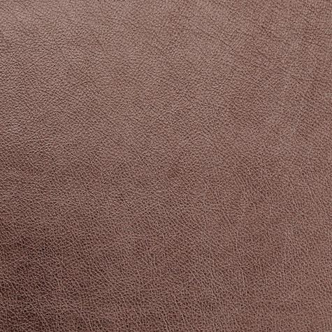 Antique Brass - Leather - Album