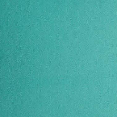 Spring Tide - Leather - Album