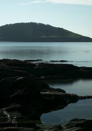 Looe Island.jpg