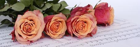 roses-2366341_1920.jpg