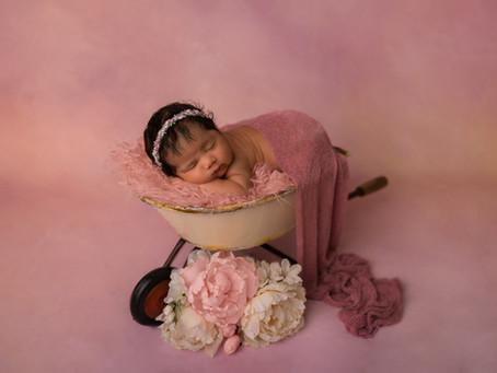 Newborn | Baby Girl Natalie | Candice Wheat Photography