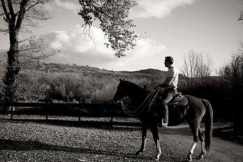 Débourrage jeunes chevaux. Travail et entrainement du cheval. Education du poulain. Chevaux difficiles ou à problèmes