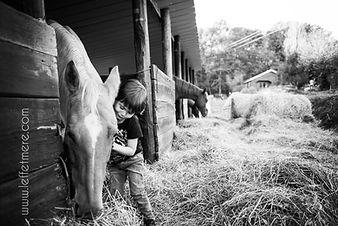 equitherapie où le travail avec des enfants autistes. Le cheval est un animal qui donne sans compter. Stage à domicile dans le 31, 32, 81, 82