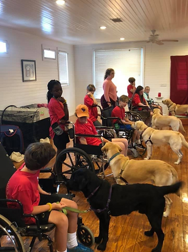 Young volunteers work with Assistance Dogs in training from PAALS