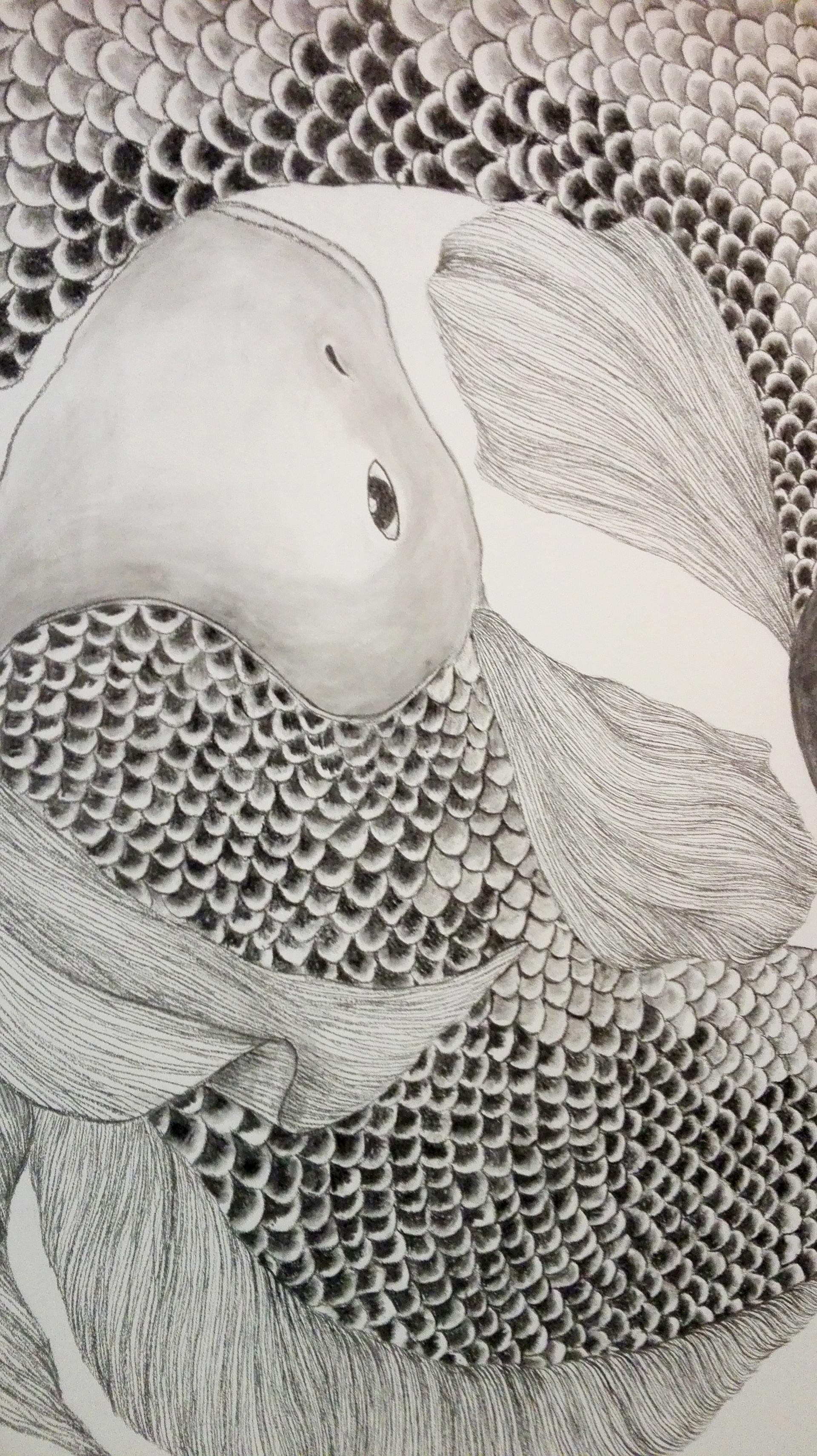 fish mural 6.png