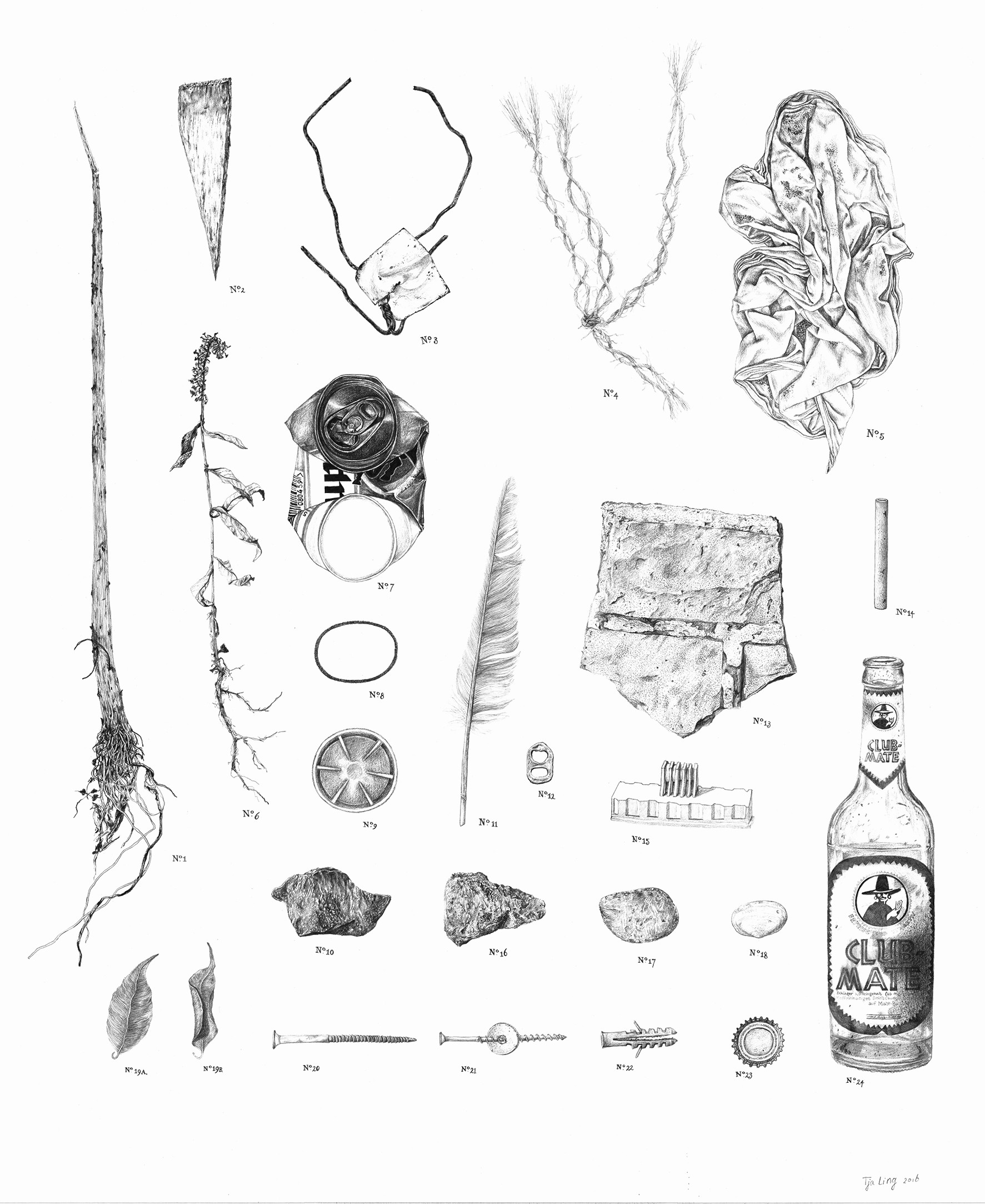 Cabinet of (un)natural Curiosities