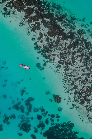 Aerial Photo of an Ocean