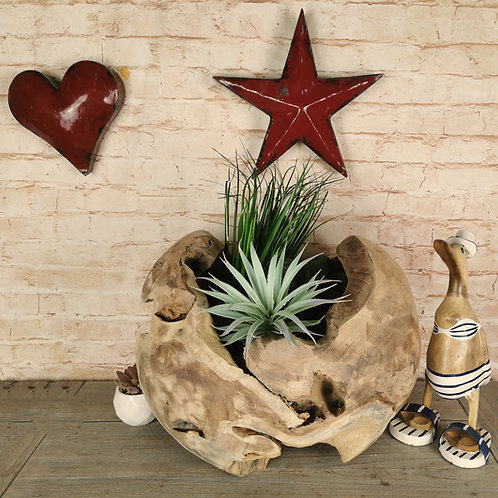 Teak Root Ball Planter