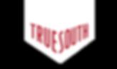 True South's Company logo