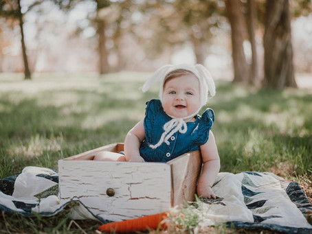 RALEIGH | 6 MONTHS OLD