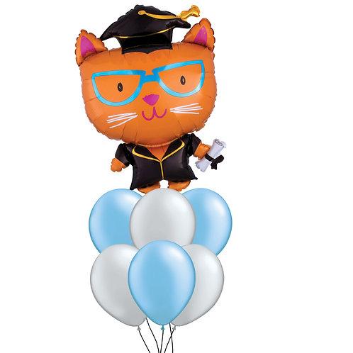 Cat Graduation Cluster