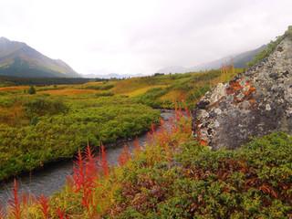 Stikine River_Marilla.jpg