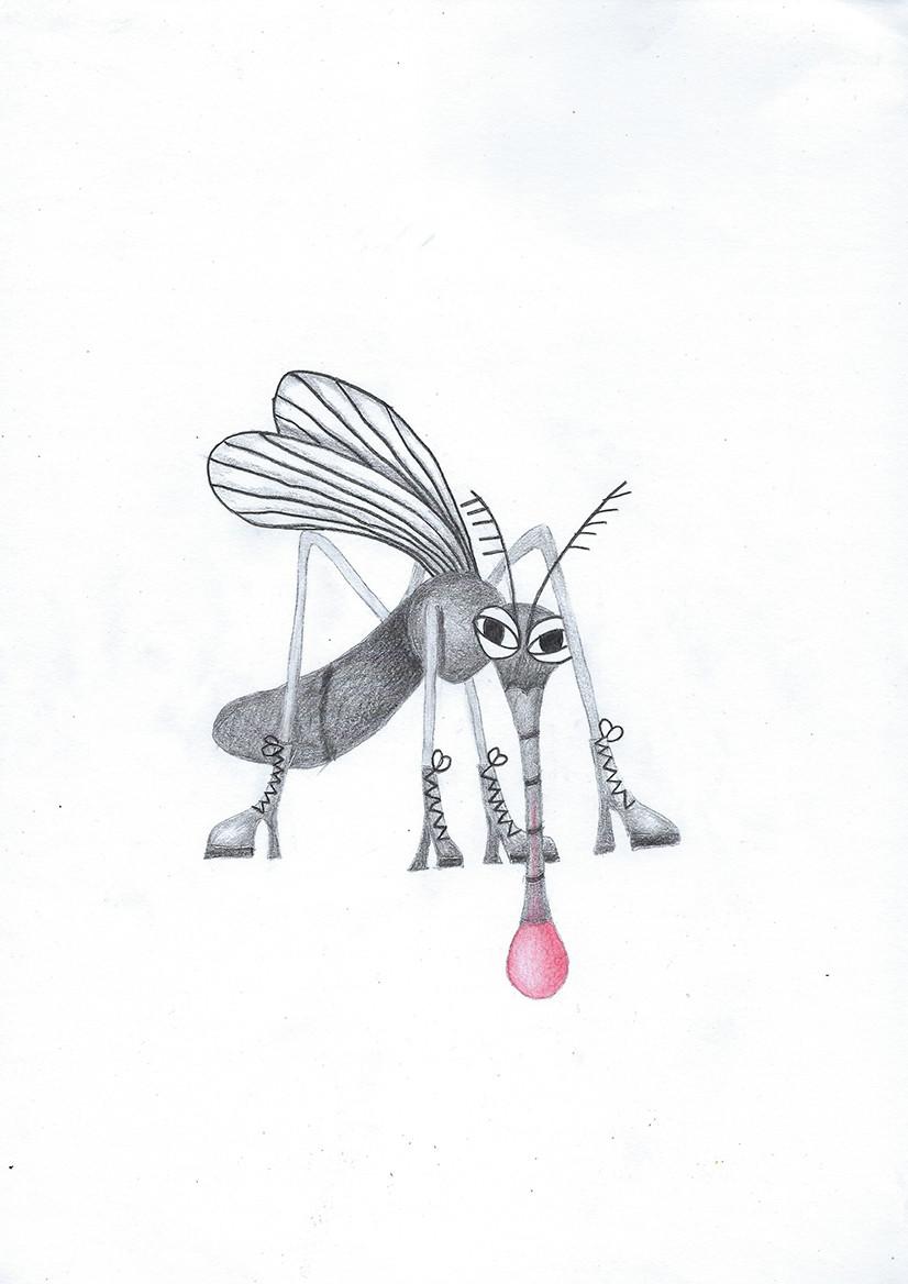 חרקים.jpg