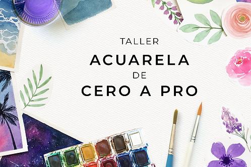 Taller Acuarela de Cero a Pro