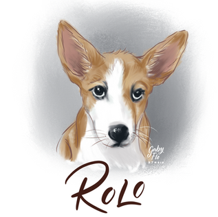ROLO.png