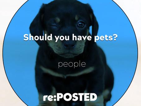 Should you have pets?