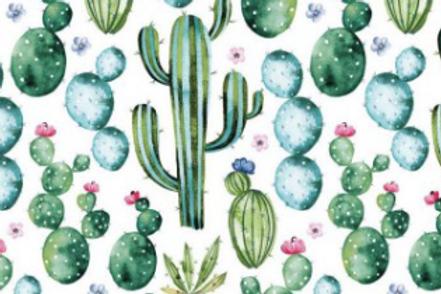 Cacti World