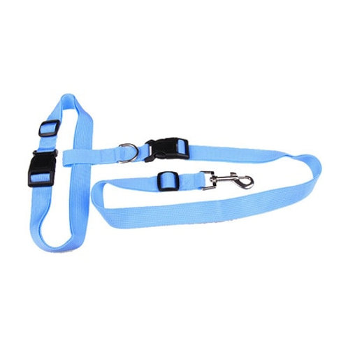 "running leash for waist/ ""jog leash"""