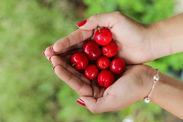 Bowman Cherries.jpg