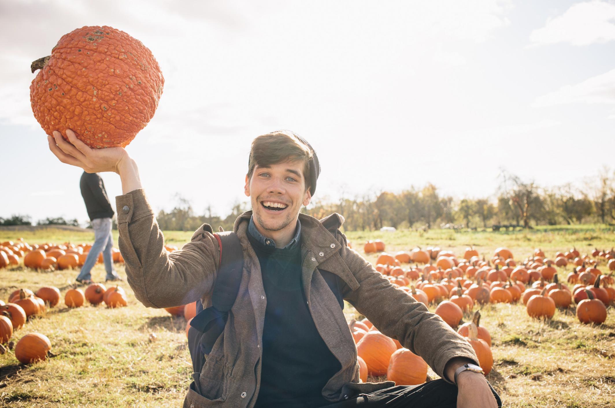 Man Lifting Pumpkin Stock
