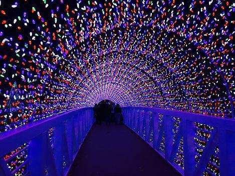 tunnel-of-christmas-lights-MZ5RYG9.jpg