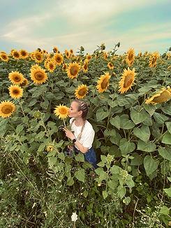 Bowman sunflowers.jpg