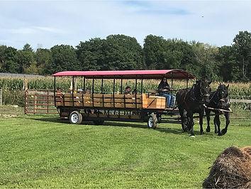 hay rides good.jpg