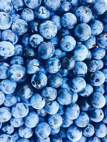 Bowman_Blueberries.jpg