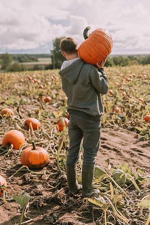 Boy Lifting Pumpkin Stock.jpg