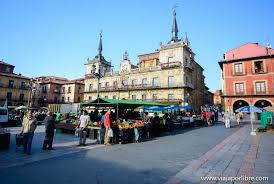 PLAZA MAYOR - MERCADO