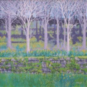 Sally O'Neill Art Painting Acylic Devon Dartmoor