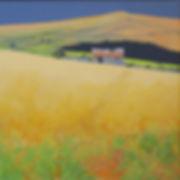 Sally O'Neill -Old Tin Roof- Acrylic on