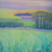 Sally O'Neill Art Painting Acylic Devon Dartmoor Barn Flowers Field