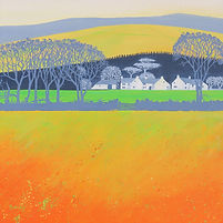 Yellow & Orange Field.jpg