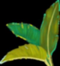 TropicalLeaves.png
