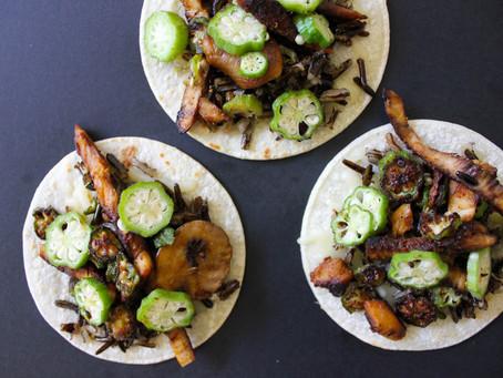 Mushroom Chicken Tacos